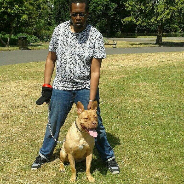 Dog who bit woman in Barking Park will be destroyed
