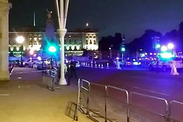 Uber driver hoped to be killed by police outside Buckingham Palace