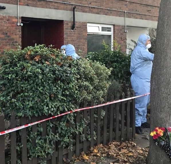 Son 'stabbed his mother to death'